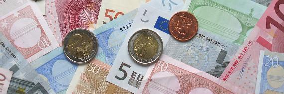 Euro's in munten en briefjes
